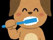 hamigaki_dog
